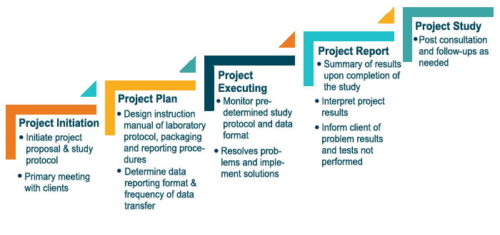project management accordion